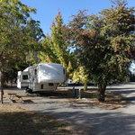 Umpqua safari rv park
