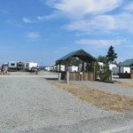 Fidalgo bay resort