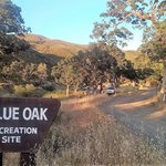 Blue oak campground clearlake oaks
