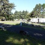 The driftwood rv resort campground