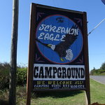 Screamin eagle campground