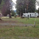 Packwood rv park campground
