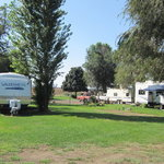 Shady tree rv park campground