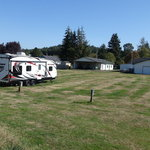 Willapa harbor golf rv park