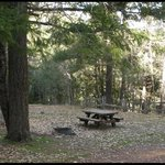 Bridge flat campground
