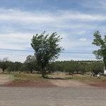 I 40 grand canyon rv park campground