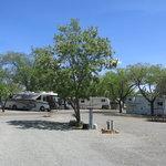 Orchard ranch senior resort