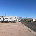 Arizonian travel trailer resort