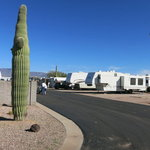 Arizonian travel trailer resort
