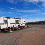 Desert dog rancho