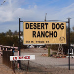 Desert dog rancho