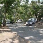 Camp comfort park
