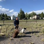 Yellowstone grizzly rv park