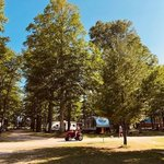 Chain o lakes campground
