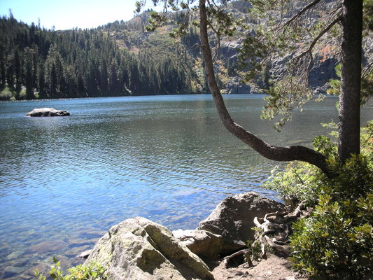 Castle lake campground