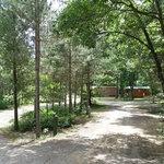 White river rv park campground