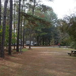 Jellystone park camp resort elberta al