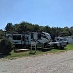 Kudzu campground