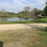 Paynes rv park