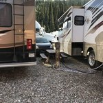 Denali rainbow village rv park