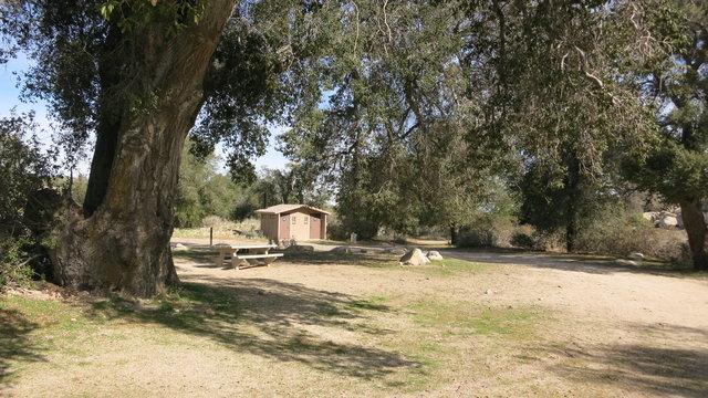 Cottonwood campground blm