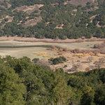 Coyote lake harvey bear park