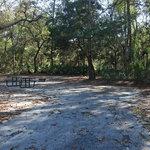 Alexander springs campground