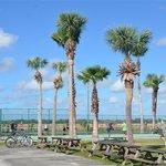 Tobys rv resort