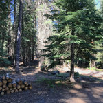 Domingo springs campground