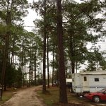 Lake kristina campground
