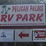 Pelican palms rv park