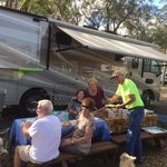 Pellicer creek campground