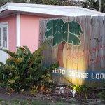 Lakeshore palms travel park
