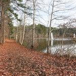 Twin lakes rv park georgia