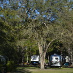 Okefenokee pastimes camping