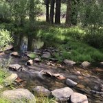 Troy Meadow Campground Reviews - Campendium