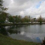 Sycamore rv resort