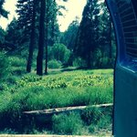 Green valley campground sbnf