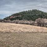 Allen ranch
