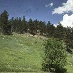 Elk creek resort and lodge