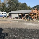 Bettys rv park