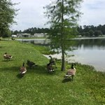 Lakeside rv park louisiana