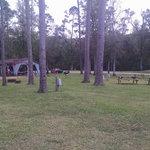Nibletts bluff park