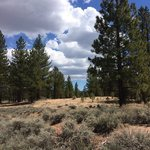 Holcomb valley campground