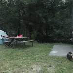 Riverview campground minnesota