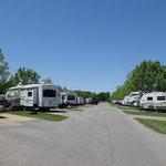 Memphis jellystone camp resort