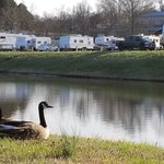 Cape camping and rv park
