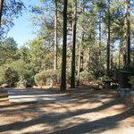 Idyllwild campground