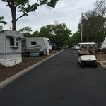 Shady pines campground