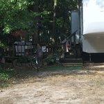 Old cedar campground